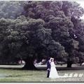 如晞在成大榕園拍的婚紗舊照