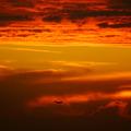 空之雲 - 12