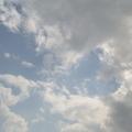 爵士 喜歡 望天 & 看雲!  與您分享之!