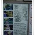 20091011 東港、小琉球半日遊 - 17
