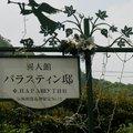 神戶-玫瑰館02