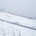合歡山上飄雪了