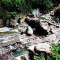 頁岩抗沖蝕能力弱,所以會被切成這樣的河床。
