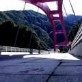 巴陵大橋。