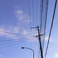 街燈,不只是用來照明的。形式各異的燈柱,其實也在嘗試用自己的方式,說著屬於自己的故事...