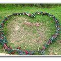「安妮公主花園」位於台中縣新社鄉,擁有500坪的園區,其獨特的歐式建築風格令人驚艷,皇室貴族才能獨有的香草花園世界,讓人有如置身於夢境般的綺麗世界。走一趟「安妮公主花園」您將發現世外桃源其實就在這裡。