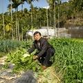 2011農曆春遊-日月潭、清境農場 - 26