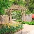 The Morton Arboretum 4100 Illinois Route 53, Lisle, Il. 60532