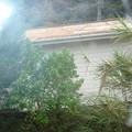 2008年4月在紐西蘭。準備修換屋頂、賣掉房子、海運……