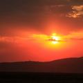 塞倫蓋提Serengeti是UNISCO人類自然遺產,它以豐富的各類型動物而聞名於世,但它的夕陽也美的令人驚嘆!尤其當動物或樹木的身形在夕陽餘暉下形成一幅剪影時,美的令人屏息---