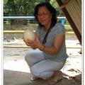 鴕鳥蛋 - 波德申鴕鳥園 - 馬來西亞