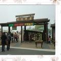清境農場~青青草原 美麗風光