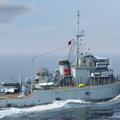 MSO-1307 永慈號軍艦 Ex-USS 488 Conquest