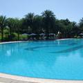 美崙的游泳池,很有國外影集度假感!!