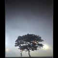 2012浮光掠影015