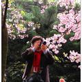 斜風細雨賞櫻花,淡水去來一日還。