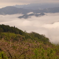 新竹五峰山上人家,猶如仙境。