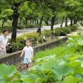 這麼美的台灣鄉村