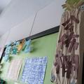 這個班級很有趣,很愛畫畫....有好多回憶