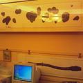 張天宇畫廊---溫馨小窩 - 1