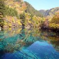九寨溝是大自然的傑作,是人類風景美學法則的最高境界。