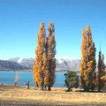 紐西蘭的第八大湖泊,蒂卡波湖地處風光明媚的旅遊區,湖水乳藍色。