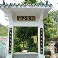 土城是台北南郊最容易到達的賞桐去處,廣東油桐數量很多