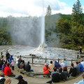若可絲女士間歇泉(Lady Knox Geyser),是類似黃石公園的老忠實泉,每24至48小時之間,當地下池滿就規律的噴發出來,噴發高度可達21公尺