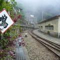 2008.06,嘉義阿里山森林小火車之奮起湖站。