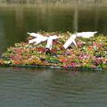 台南公園賞花 - 5