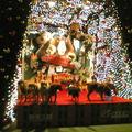 20081210晚21:45華納威秀附近的新光三越街道上的奇遇~ 辦年貨+新年拜家的戰利品