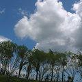 花蓮雲水間 - 4