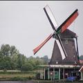 荷蘭.荷蘭.我愛你!