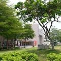 嘉義市古名「諸羅山」,1704年為諸羅縣治所在,因諸羅城形狀似桃,故稱「桃城」。現嘉義東區為原諸羅城及現市府所在。