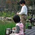 虎年春節前 - 2