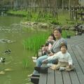 虎年春節前 - 1