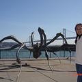 2008年9月30日舊金山叮噹車之旅(背後為海灣大穚)
