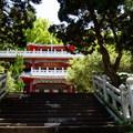 陽明山2010.02.
