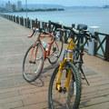 我愛騎單車