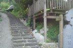 「太平濱海步道」,又稱「南灣頭太平濱海懷舊步道」,位於台北縣林口鄉太平村,是昔日南灣頭與太平嶺兩地之間往來的越嶺保甲路。   這條古道近年來在八里垃圾焚化廠回饋地方的建設輔助下,鋪設了完善的石階步道,全長約3公里,成為一條兼具山海景色及古道風情的休閒步道。