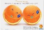 可愛的「橘子」、有趣的「橘子」、新奇的「橘子」、百變的「橘子」、...,只要是「橘子」,都歡迎來這裡和大家見面!^^