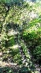 孝子山,位於西側的慈母峰,北端的岩壁較高的為佛佗岩,近年來已陸續架設欄杆及繩索,相當安全 的健行登山步道,全程三座山走完行程莫約二個小時,一般走完全程,以早上開始入山,比較有充裕時間