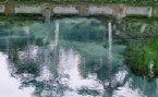 拍攝自峇里島建於十一世紀之聖泉古蹟,聖泉廟之聖泉^^
