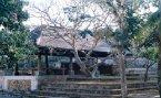 拍自峇里島-猴園一角