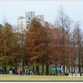 大湖公園錦帶橋 - 29