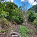 2020 草嶺蓬萊瀑布步道