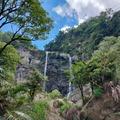 草嶺蓬萊瀑布觀光步道是草嶺十景之一,遊客可沿地形往竹篙溪底仰觀蓬萊瀑布。