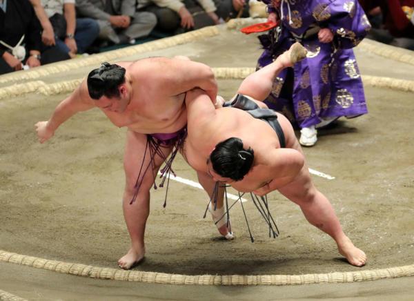 結果 遠藤 相撲