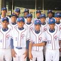 2012桃園青少棒隊 小馬級世界青棒賽亞軍