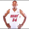 NBA 熱火 後衛 Ray Allen